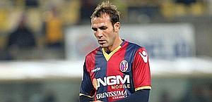 Daniele Portanova, difensore del Bologna. Ansa
