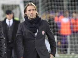 Il tecnico del Livorno Nicola. LaPresse