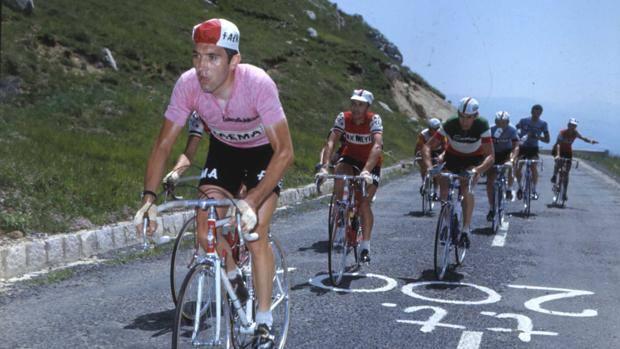 Eddy Merckx in maglia rosa. Bettini