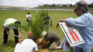 La palma piantata oggi a Sepang in ricordo di Simoncelli a 3 anni dalla sua scomparsa