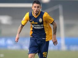 Leandro Greco, 29 anni. Ansa