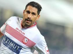 Marco Borriello, 33 anni, 4 gol in campionato. LaPresse