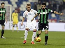 Francesco Magnanelli in azione contro il Torino. Ansa