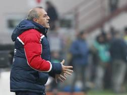Fabrizio Castori,  61 anni. LaPresse