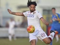 Amauri Carvalho de Oliveira, 35 anni, attaccante del Torino. LaPresse