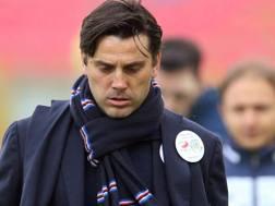 Vincenzo Montella, 41 anni  (Ansa)