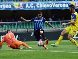 Il gol di Mauro Icardi, 22 anni, nell'1-0 dell'andata contro il Chievo. Afp