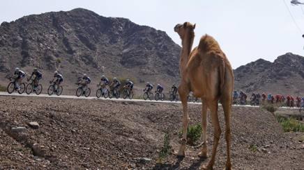 Il passaggio della terza tappa del Dubai Tour 2015. Bettini