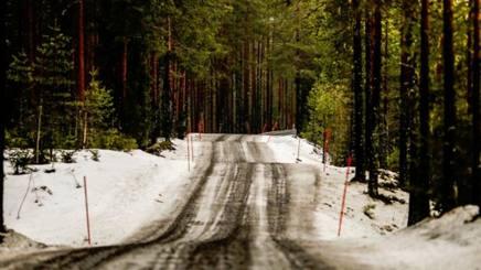 Inedito scenario per il Rally di Svezia, con pochissima neve sulle strade