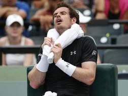 Andy Murray. Epa