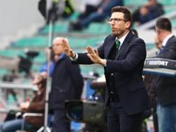 Il tecnico del Sassuolo, Eusebio Di Francesco. Ansa