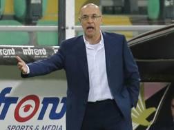 Davide Ballardini, 52 anni, per la seconda volta in stagione sulla panchina del Palermo. LaPresse