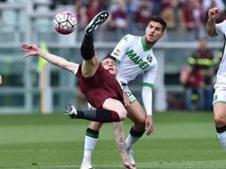 Un momento della sfida tra Torino e Sassuolo. Getty