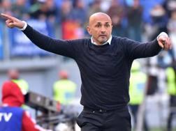 Luciano Spalletti, 57 anni. Ansa