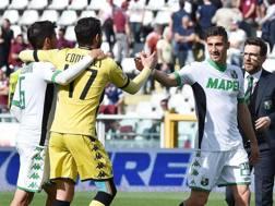 L'esultanza dei giocatori del Sassuolo a Torino. Ansa