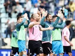 L'esultanza dei giocatori del Palermo dopo la vittoria a Frosinone. Ansa