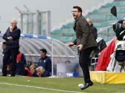 Eusebio Di Francesco, allenatore Sassuolo. ANSA