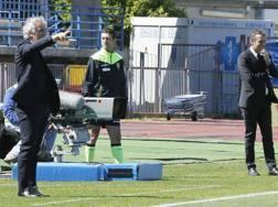 Roberto Donadoni durante la sfida contro l'Empoli. Ansa