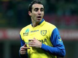 Dario Dainelli, 36 anni. Forte