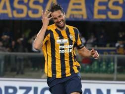 Luca Toni, 38 anni, 6 gol in campionato. Ansa