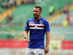 Antonio Cassano, 33 anni. Ansa