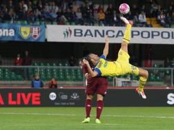 Riccardo Meggiorini, 30 anni. Ansa