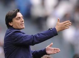 Vincenzo Montella, 41 anni, LaPresse