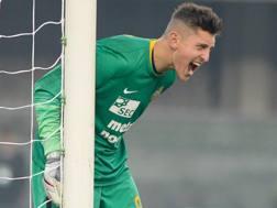 Pierluigi Gollini, 21 anni, portiere del Verona. Getty Images