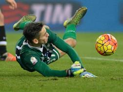 Alex Meret, 19 anni, portiere dell'Udinese. Getty Images