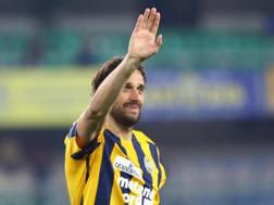Luca Toni, 39 anni oggi, ex attaccante del Verona. Ansa