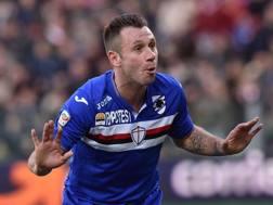 Antonio Cassano, 33 anni. Getty