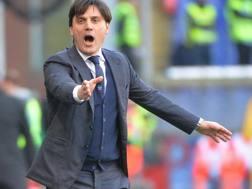 Vincenzo Montella,  42 anni, tecnico della Sampdoria. Ansa