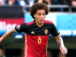 Axel Witsel, 27 anni Forte