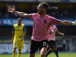 L'attaccante Alberto Gilardino, 33 anni. Getty
