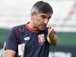 Ivan Juric, 40 anni, tecnico del Genoa. LaPresse