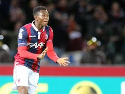 Amadou Diawara, 19 anni, centrocampista del Bologna. Ansa