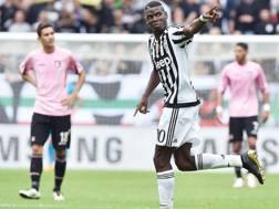 Paul Labile Pogba , 23 anni, ad un passo dallo United di Mou. Ansa