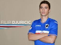 Filip Djuricic, 24 anni