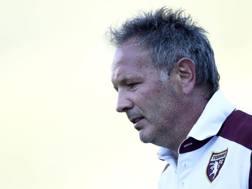 Sinisa MIhajlovic, tecnico del Torino. Lapresse