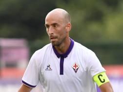 Borja Valero, 31 anni, centrocampista della Fiorentina. Lapresse