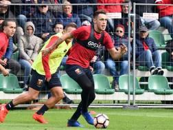 Lucas Ocampos, nuovo acquisto del Genoa. Lapresse