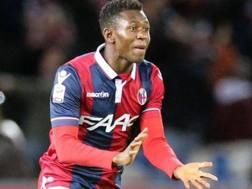 Amadou Diawara, 19 anni