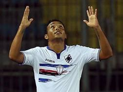 L'esultanza di Luis Muriel, 25 anni, man of the match al Castellani. Getty
