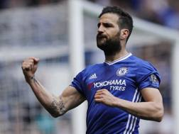 Cesc Fabregas, 29 anni, centrocampista del Chelsea. Reuters