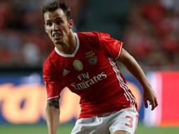 Alejandro Grimaldo, 21 anni, difensore del Benfica