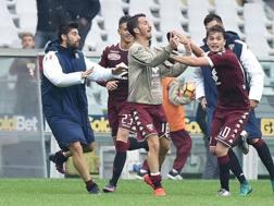 La gioia dei giocatori del Torino dopo il 2-2 di Ljajic. Ansa