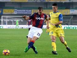 Roberto Inglese e Daniele Gastaldello. Getty