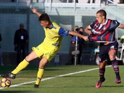 Roberto Inglese e Diamel Mesbah durante un'azione di gioco, ANSA