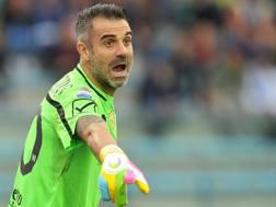 Stefano Sorrentino, portiere del Chievo. LaPresse