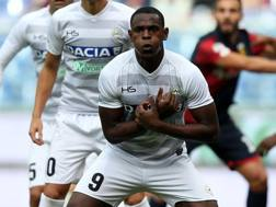 Il colombiano Duvan Zapata, 25 anni. Getty